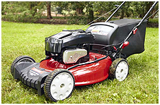 Lawn Mowers at Marks Sales & Leasing